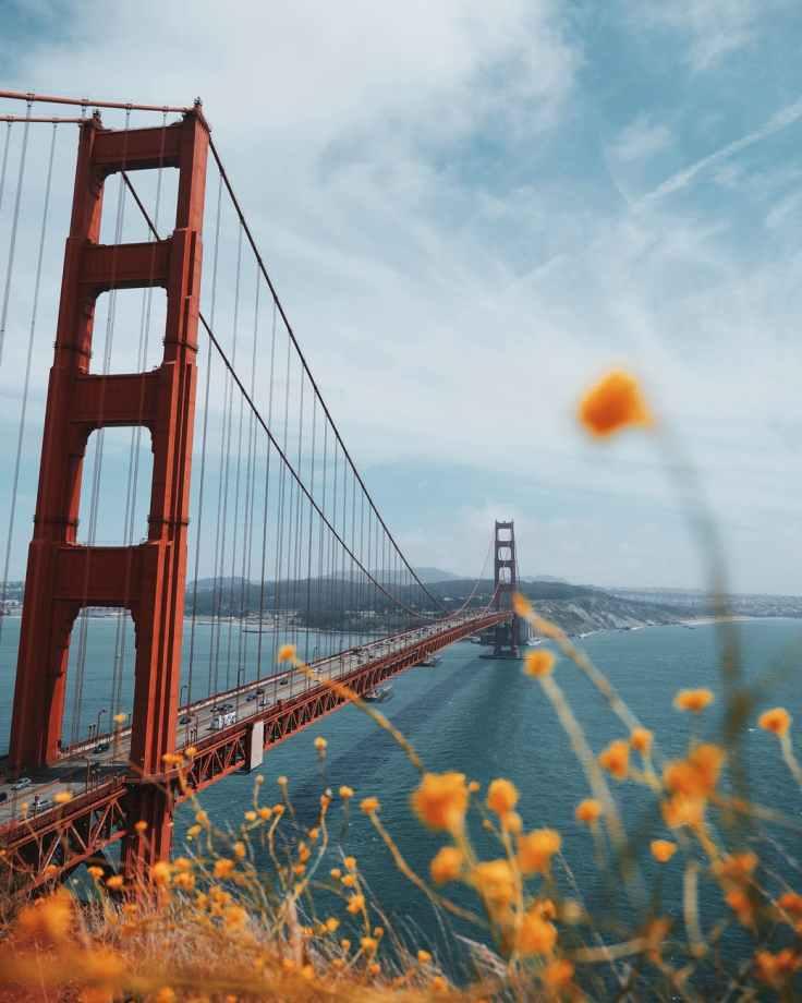 red suspension bridge
